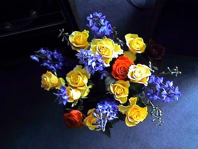 Blumen-Mu-tag-97